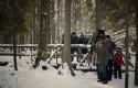 Zimowy zlot SPFL - Tańczący z żubrami