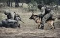 Pies najlepszym przyjacielem żandarma